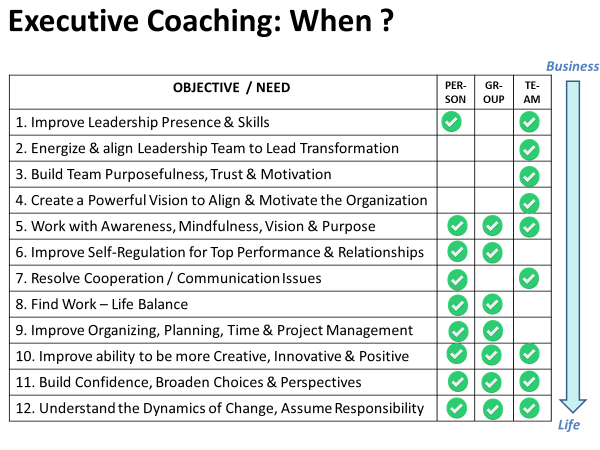 Executive Coaching Help Areas