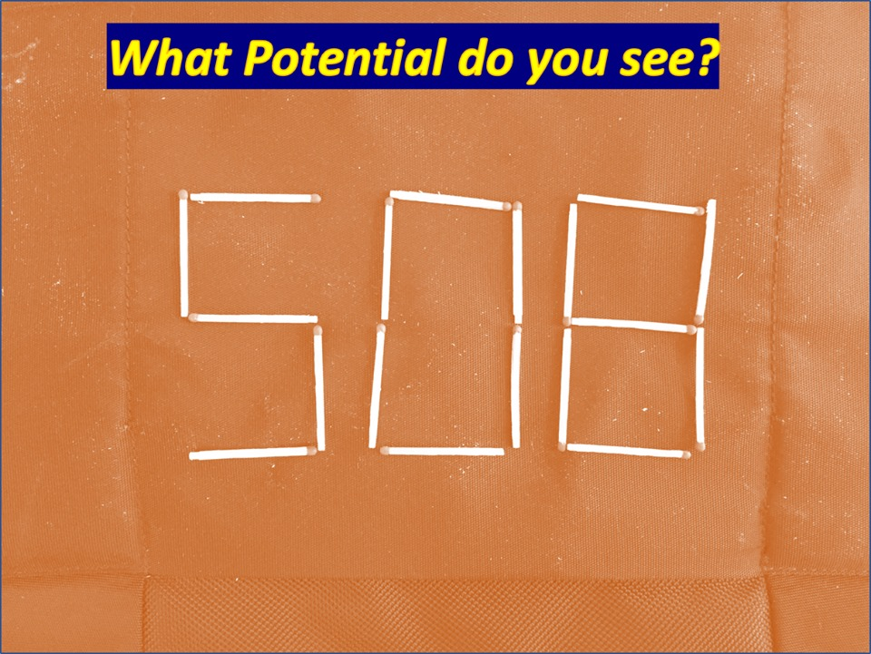 What Potential do you see?