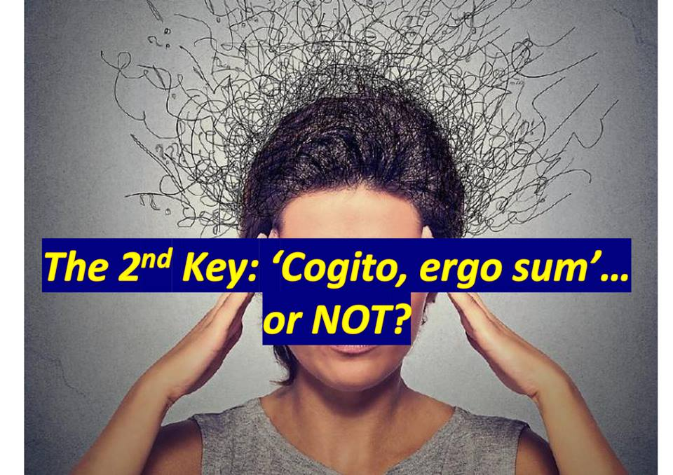 'Cogito, ergo Sum', or may be not?